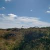 Newhaven Tide Mills 471