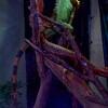 Green Iguana, Iguana iguana 286
