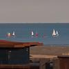 East Beach Cafe & regatta 2380