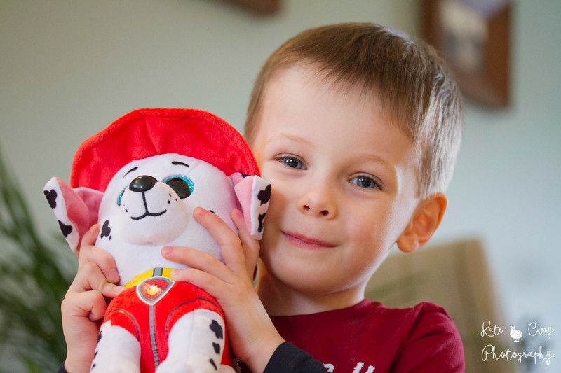 Child with Marshall, Paw Patrol Cuddly Toy