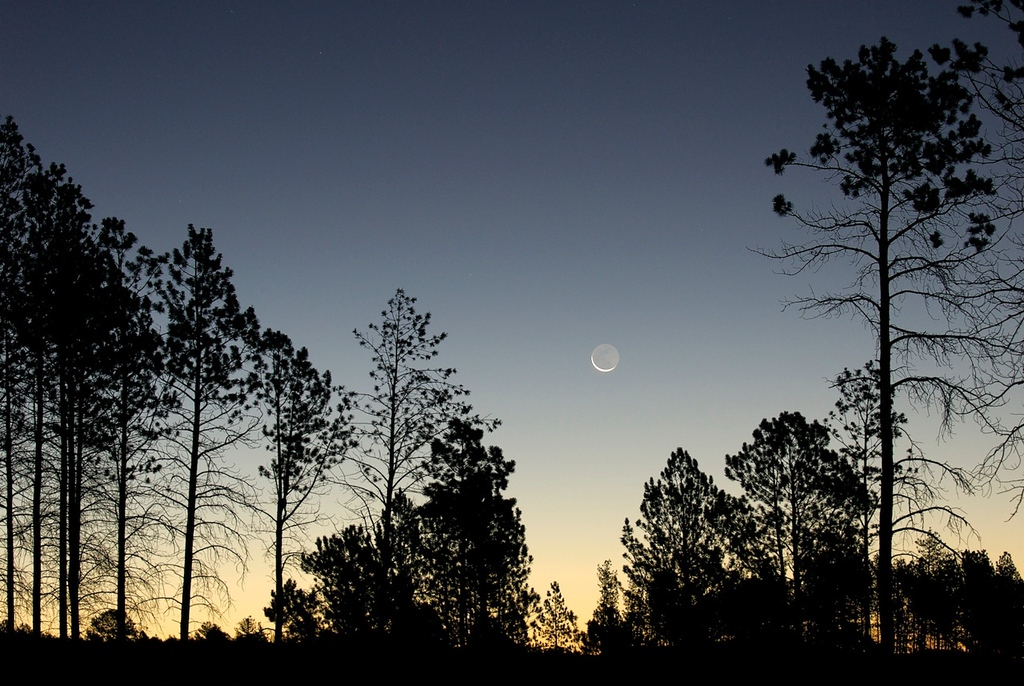 """JUST BECAUSE - 14 APRIL 2012  Sunrise & Moon - Custer, South Dakota, File # 0708521  <a href=""""http://www.tom-hill.biz/Galleries/Scenics/Elsewhere-Japan-Plains-Maine/20972581_TxHZrc#!i=1666655655&k=VGs2xHm&lb=1&s=A"""">  Link To Original Image </a>  I just read an article by a noted photographer explaining his experiences with a new tool.  I read his work because he does portray a style of writing, photography, and business success sense that's worth keeping track.  Yet, I don't agree with his techniques or even style.  I find his work entertaining at least.  Occasionally I see something by him or anyone that sparks an idea that motivates me to write in my own blog.  In this case I was motivated by his statement that if he didn't use the high tech features of his new gigantically expensive camera it was like wasting the money.  Huh!  The feature in question was the auto exposure capability of the camera.  You see he was learning the nuances of the new camera and trying to adjust his expectation and therefore learn the necessary adjustments to make the new system work as well as what he was used to.  In this case it was about the auto exposure system in this camera.  Camera metering systems are marvels of technology using the best a camera makers engineers talents can devise.  Every new generation camera touts how much better it was than the previous model.  In the equipment world, usually very detailed and very large sounding numbers are spouted out by the advertising with the premise that people would agree more was always better.  Something with bigger numbers must be better than the one with fewer.  Here's a reasonably successful photographer with a large following of potential clients struggling with his camera's newness.  He's dealing with the meter and how it sets the exposure.  It's not what he's used to.  So, in the most positive words, he explains his struggles.  Of course, I would've given up earlier and simply go back to what I know best, go manual.  What I m"""