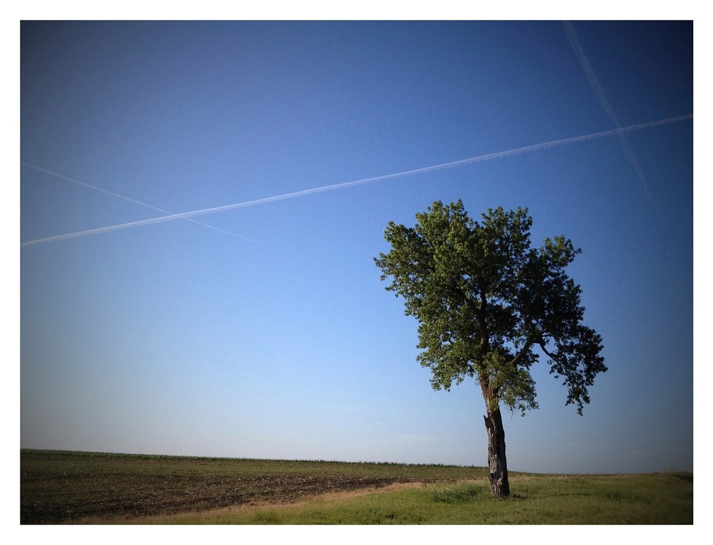 THE PROMISE OF RATIONAL - 30 JUNE 2012<br /> <br /> Tree & Contrails - Cummings, Kansas<br /> <br /> I've talked before how rational thought fits into our lives.  I think I even talked about how feelings seem to fit in as well.  About 200 or more years ago when the first industrial revolution began, rational thought began to gain substantial traction with society in general.  Originally promoted by the ancient Greeks, rationality was the premise that improving knowledge and society and getting closer to truth was through science and deductive reasoning.  This age of enlightenment 200 years ago directly led to the industrial revolution and is the primary philosophical force in our world today.  There is tremendous promise related to being rational.  The problem is if you believe that's all there is you are missing much.<br /> <br /> At the most basic, rationality is simply deductive reasoning where an idea leads to another idea that leads to another all logically tied together.  Of course, all these ideas are themselves based on rationality.  Meaning, they're rationally justified. <br /> <br /> Here's the problem, even if you're following a rational thought flow based on the best arguments the direction is still based on a gigantic key ingredient, the human mind.  The path a certain rational argument takes is no more truthful than any other rational argument that makes sense--see, the human mind involved again.  In the scientific world, a reasonable rational argument is simply an untested argument until there is empirical evidence giving it better credibility. The point here is many smart rational people can come up with different arguments and they all have the same merit until real empirical data is collected suggesting one rational thought is better than the other.  <br /> <br /> Why is this important?  Why am I bringing this up?  It's important because your good idea is just as useful and full of merit as the next guys until there's real evidence to say otherwise.  If you still can't see the possibility consider this.  What if the only difference between one guy and the next guys good idea has nothing to do with the real merits of the idea but only about their debating power, or the power of their argument.  What if one person's idea rises to the top simply because they have better talents for discourse.   What's discourse?  It's simply communicating.  <br /> <br /> I think this is a hazardous situation.  If really fantastic ideas are lost simply because the person with that fantastic idea wasn't able to communicate it, we are all worse for it.  Could you imagine if all the great communicators believed in a flat earth where we would be today?  What if the great communicators only believed in segregation through the 1950's?  Obviously, I could go on and on.<br /> <br /> Here's the thing, when you're comparing one good idea to the next they'll have equal merit regardless of the rhetoric associated with each.  Without real empirical evidence they're all just good ideas.  The promise of rationalizing has limits until you actually gain real experience.  Until then, it's just a good idea.<br /> <br /> Cheers<br /> <br /> Tom