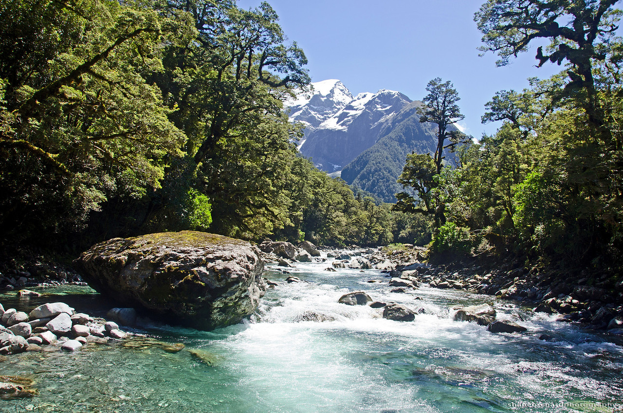 Harrison River<br /> Fiordland, NZ