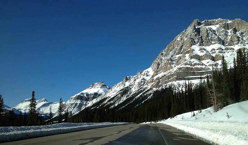 Icefields Parkway in Canada (Photo: Kim Olson)