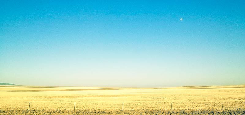 Clear blue sky & wide open fields in Montana. Photo: Kim Olson