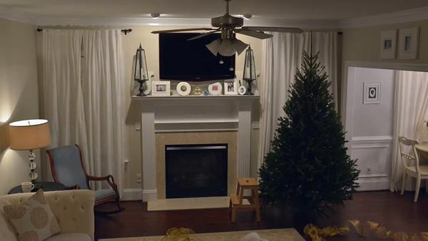 2015 Christmas Tree Time Lapse