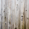 Wood Background Texture-8022