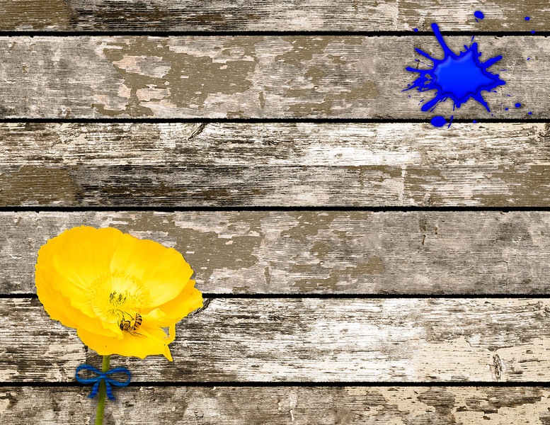 Wood plate with yellow poppy and blue paint blot