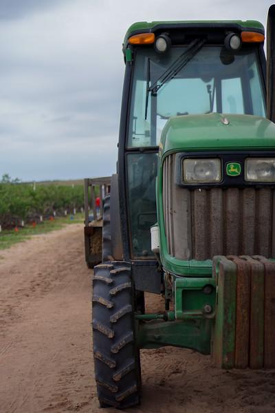 Tractor Trailer Hayrides