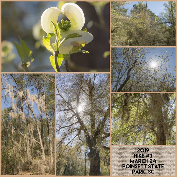 2019 Hike #3 on March 24 at Poinsett State Park in South Carolina