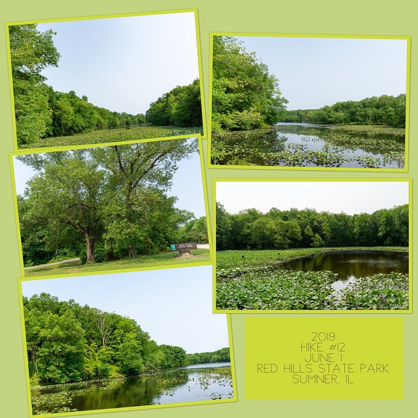 2019 Hike #12 on June 1 at Red Hills State Park in Illinois