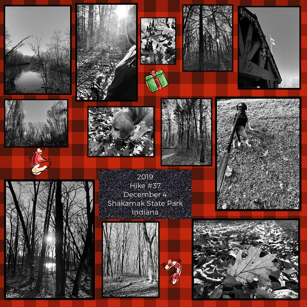 2019 Hike #37 on December 4 at Shakamak State Park in Indiana