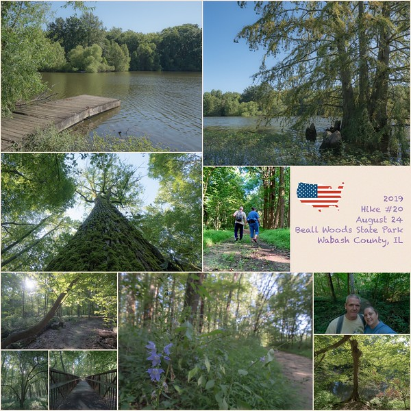 2019 Hike #20 on August 24 at Beall Woods State Park in Illinois