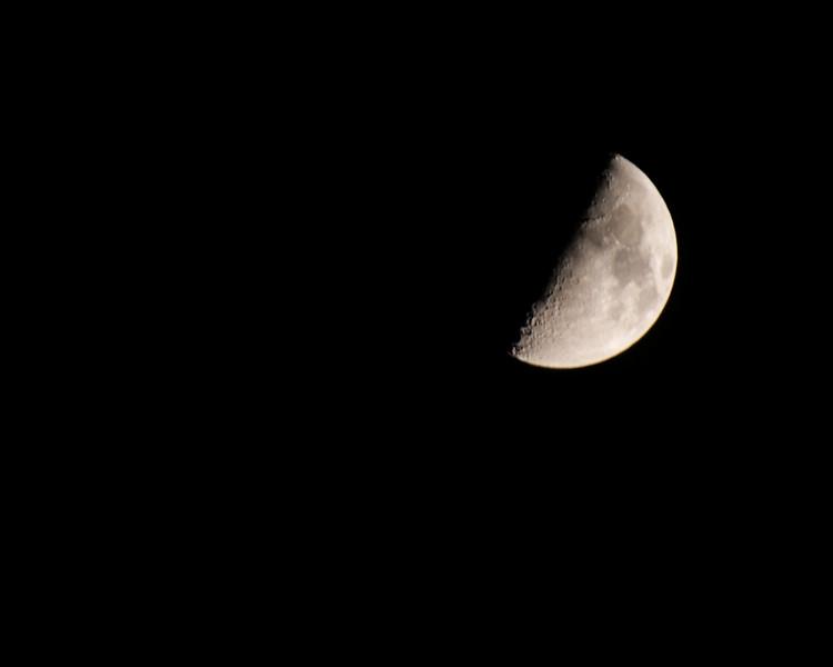 Moon Jason-08_03_14-28.jpg