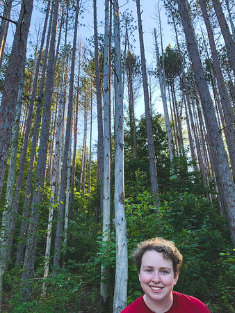 Sadie among the tall Pine Trees