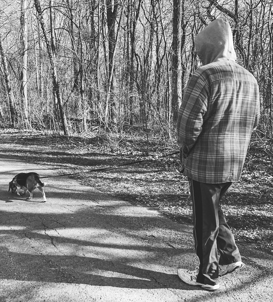 Tracy and Dexter strolling!