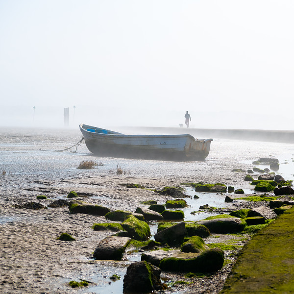 Then the fog covered the end of the jetty, John jumped up in excitement and was off to see, or not see, what was going on. This made for a great scene for myself having the boat in the foreground with John and Abby bounding along in the background.