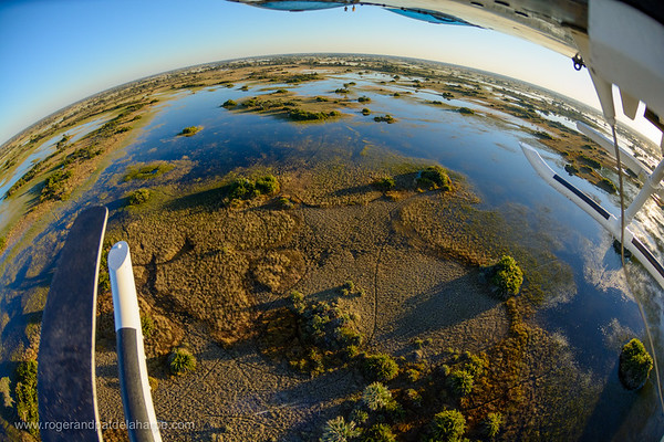 Aerial view of Okavango Delta from below a helicopter.  Botswana