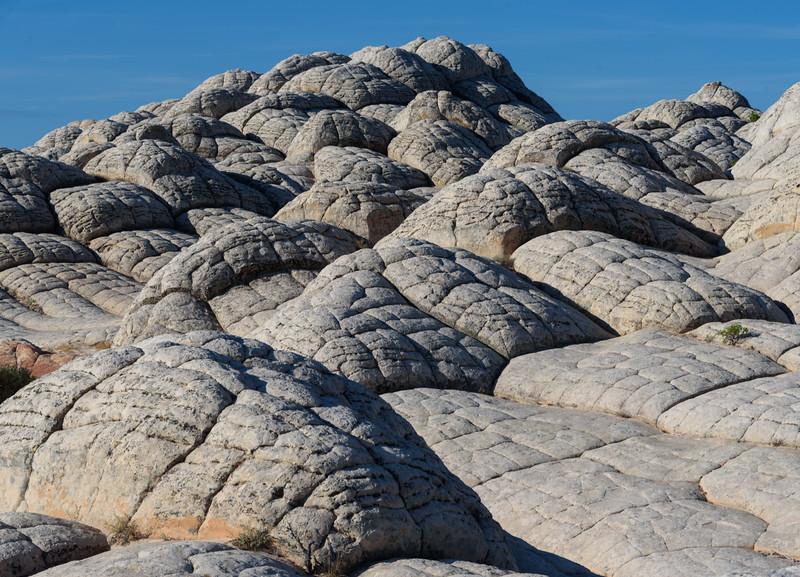 Brain Rock II