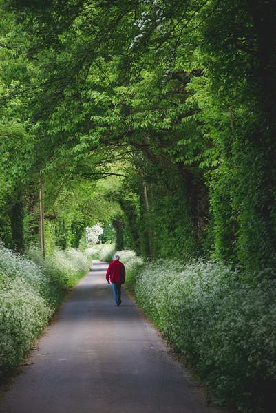 Un homme marchant sous un arbre