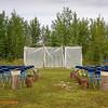 CalgaryWeddingPhotos1654
