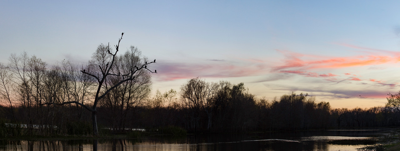 Sunset at Brazos Bend State Park. 6 photo panorama