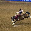 Bronco riding at the Houston Livestock Show and Rodeo