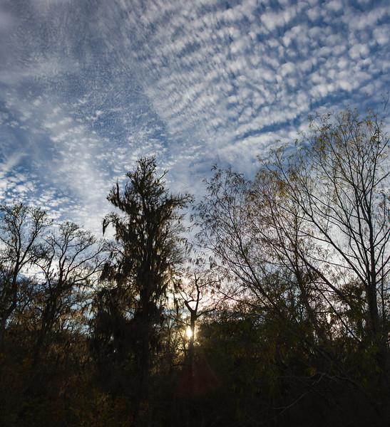 Sunset at Brazos Bend State Park. 12 photo panorama