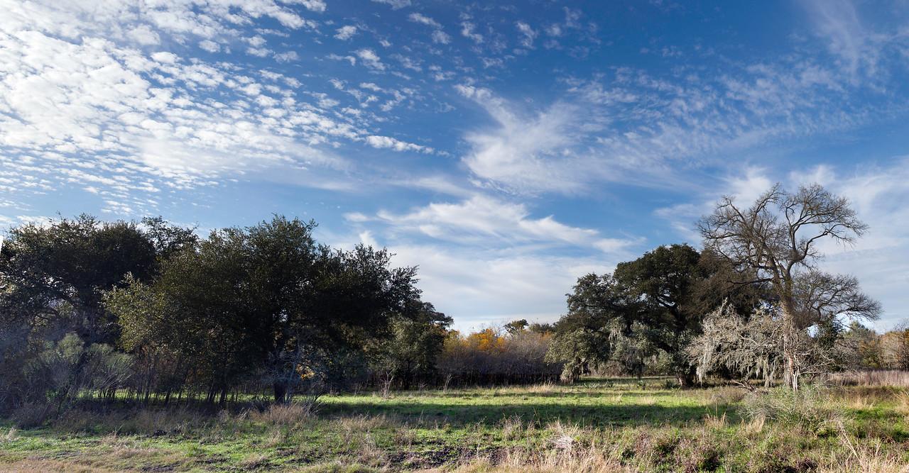Brazos Bend State Park. 20 photo panorama