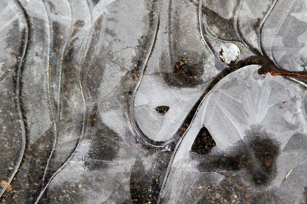 Frozen puddle during Houston's January 2018 ice storm