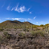 Week 7.  Saguaro cacti outside of Vail, AZ. 6 photo panorama