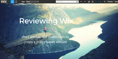 Wix review primary image