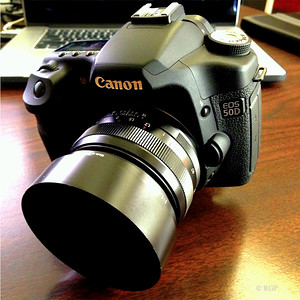 My Baby! The Canon 50D. Image: Ricardo Gomez