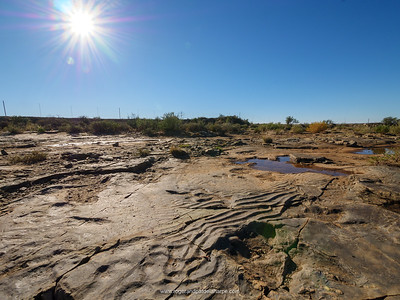 Fossilised ripples where water once flowed.Fraserburg dinosaur site. Northern Cape. South Africa.