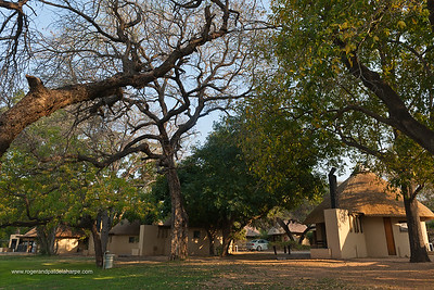 Huts, chalets or Bungalos at Skukuza Camp. Kruger National Park. Mpumalanga. South Africa. Skukuza is the main camp in the Kruger National Park. The name, adapted from Sikhukhuza (isiZulu), was a nickname for James Stevenson-Hamilton. It could be translated as 'a new broom', as Stevenson-Hamilton swept the area clean of poachers and outlaws. Skukuza is located in the southern part of Kruger and is the most popular and accessible camp, and one of the best for game viewing. In the vicinity of the camp all of the African Big Five can be found as well as other recognisable and exciting animals.