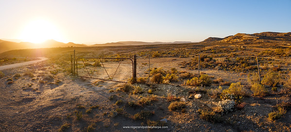 Farm gate at sunrise. Near Van Wyksdorp. Western Cape. South Africa