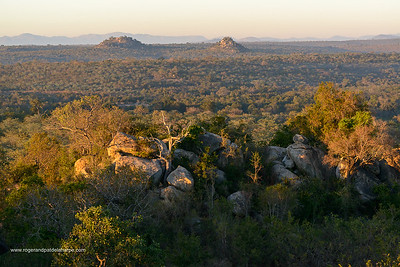 Scenic view. Southern Kruger National Park. Mpumalanga. South Africa.