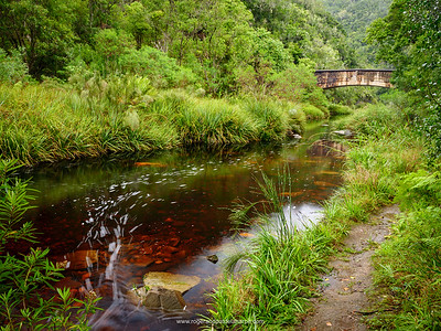 Old road bridge over the Kaaimans River on the Kaaimansgat Pass. Seven Passes Road. Near George. Garden Route. Western Cape. South Africa