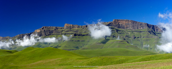 View of Drakensberg at Giants Castle. Ukhahlamba Drakensberg Park. KwaZulu Natal. South Africa