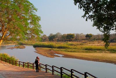 Walkway along Sabi River. Skukuza. Kruger National Park. Mpumalanga. South Africa