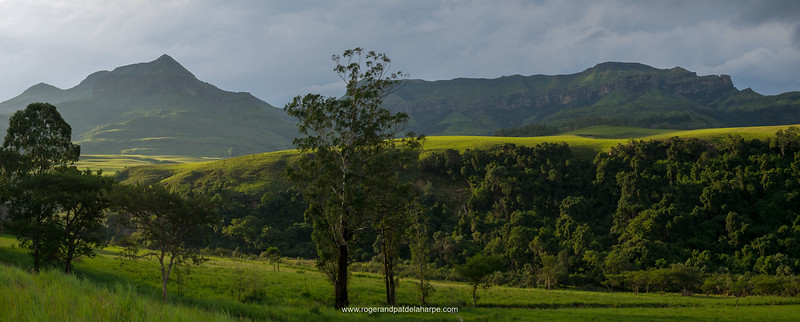Late afternoon light near The Cavern. Nothern Drakensberg. KwaZulu Natal. South Africa