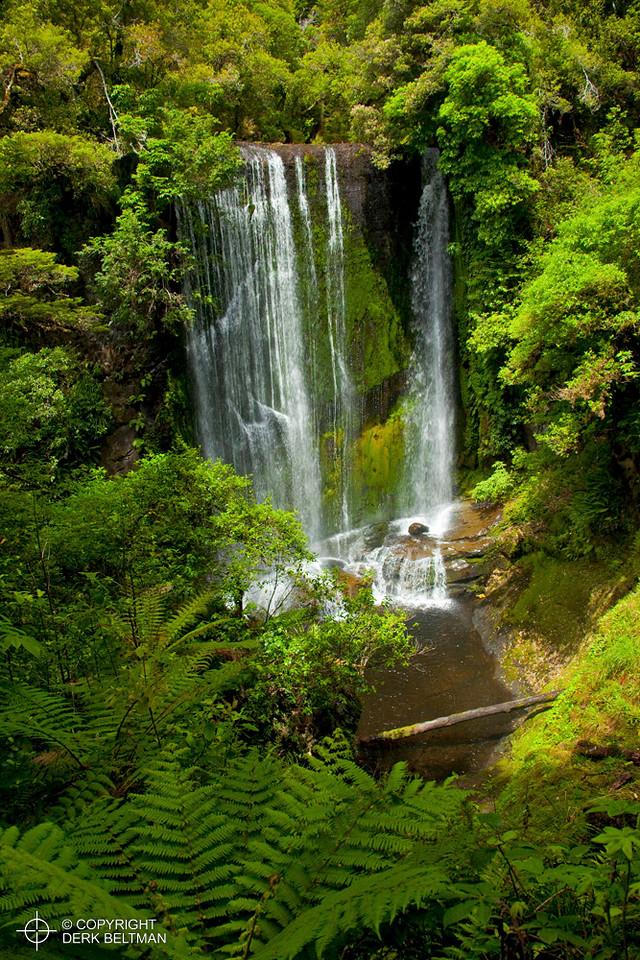 Korokoro Falls, Te Urewera National Park, Gisborne, North Island, New Zealand