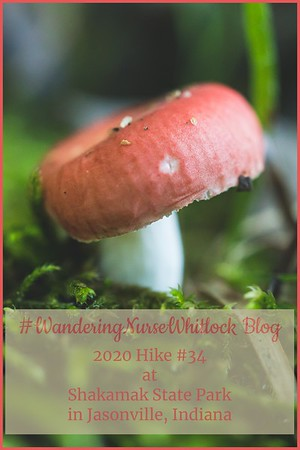 "2020 Hike #34 on August 7th at Shakamak State Park in Jasonville Indiana ""Shrooms @ Shak"""