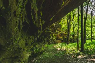 Under the Sandstone Cliff