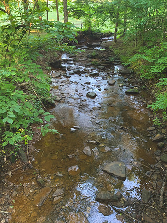 A Stream formed from Strahl Lake
