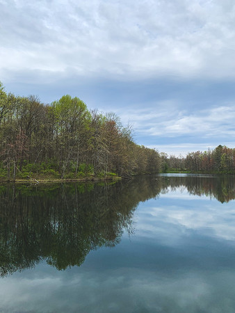 A View of the Lake