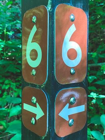 Trail #6 Signage