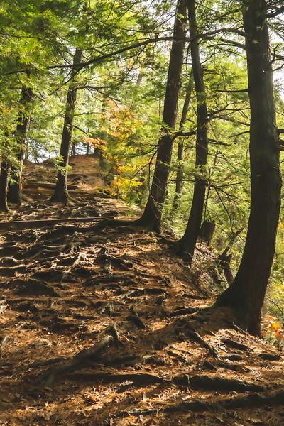 The hillside leading up to the Devil's Backbone