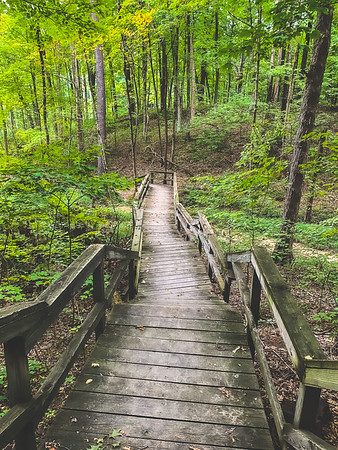 Stairs along the Trail