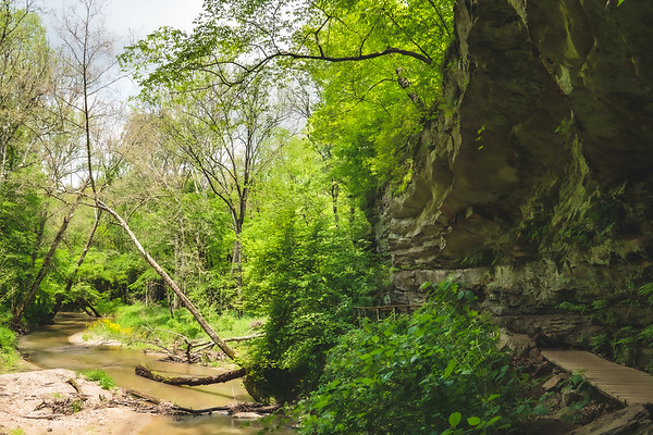 The Portland Arch Trail along the Cliffs and Creek